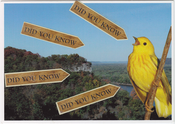 "Collage of yellow bird in front of Effigy Mounds National Monument, with many arrows saying ""Did you know?"""