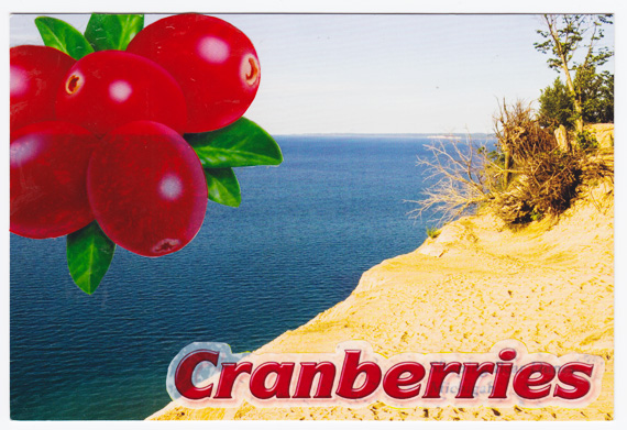Cranberries postcard collage - Sleeping Bear Dunes National Lakeshore, Michigan