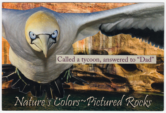 Postcard collage - Bird in front of Pictured Rocks National Lakeshore