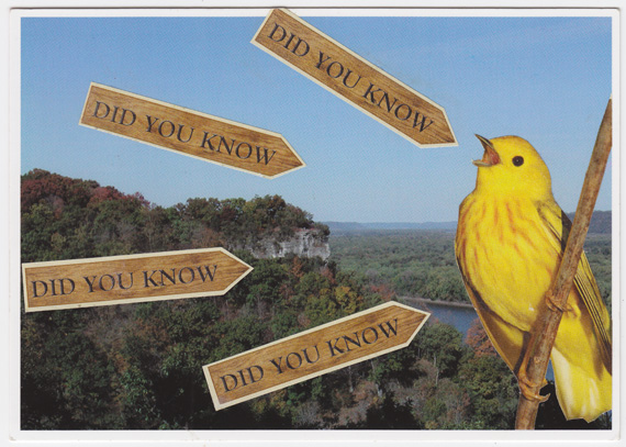 "Postcard collage of a yellow bird, Iowa's Driftless Area, and signs saying ""Did You Know?"""