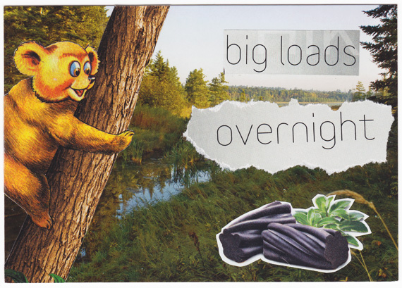 "Postcard collage of bear on tree looking at licorice with text ""big loads overnight"""
