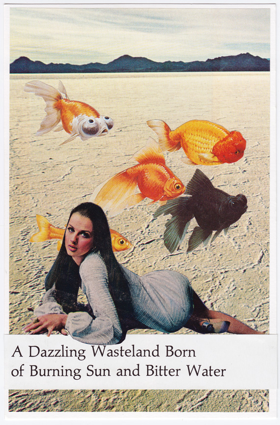 Postcard collage of Great Salt Lake Desert, woman, and fish