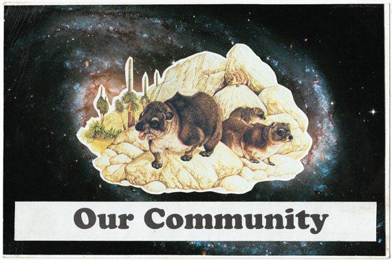 Collage: A community of mammals in space.