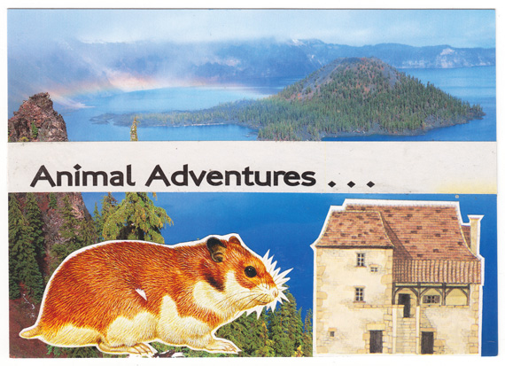 Postcard collage of hamster, house, and Crater Lake
