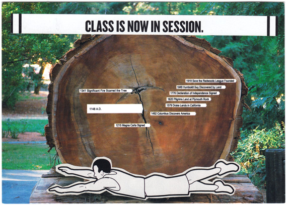 Postcard collage: Man on ground in front of tree-trunk cross-section with date markers. Text: Class is now in session.