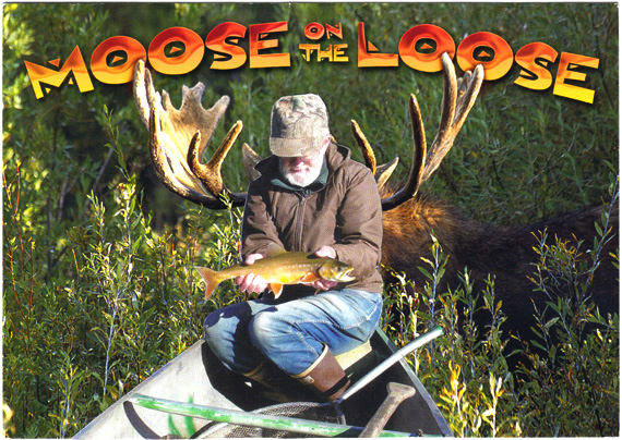 Postcard collage: A moose sneaks up behind a man with a fish. Text: Moose on the loose.