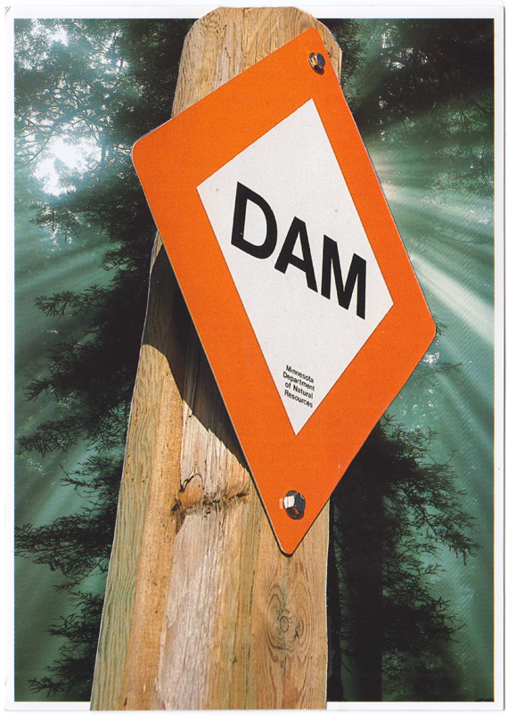 "Postcard collage: A big sign that says ""DAM"" in front of a backlit sequoia."