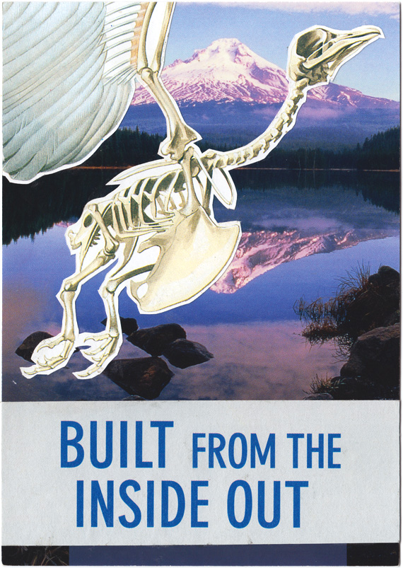 Postcard collage of skeletal bird flying in front of Mount Hood