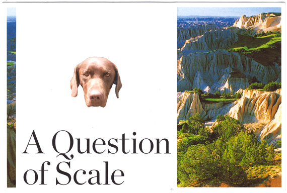 "Postcard collage of dog head in front of badlands with text reading ""a question of scale"""