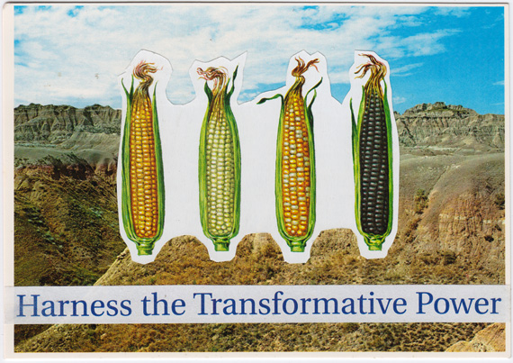"Postcard collage of four differently colored cobs of corn in the South Dakota Badlands, captioned with the phrase ""Harness the Transformative Power""."