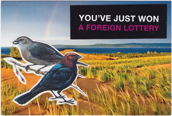 "Postcard collage of two birds on a sand dune, with text that says, ""You've just won a foreign lottery."""