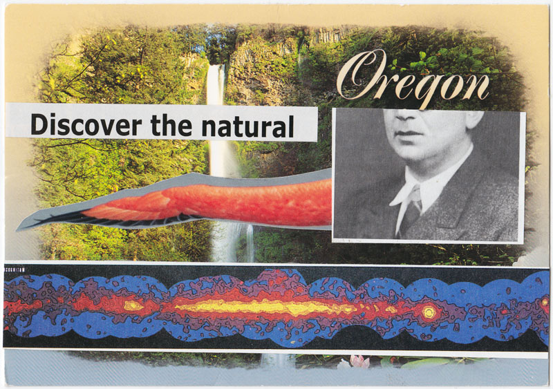 Postcard collage of waterfall, flamingo wing, old photograph, text, and scientific illustration.