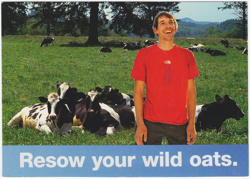 Postcard collage featuring dairy cattle, a happy-looking man, and the phrase urging the reader to sow some oatws