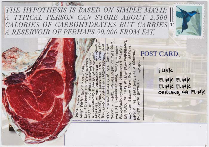 Reverse side of postcard, with lots of text, and a picture of a cut of meat