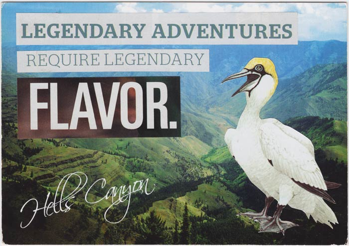 Postcard collage of bird and Hells Canyon with text that says Legendary Adventures Require Legendary Flavor.