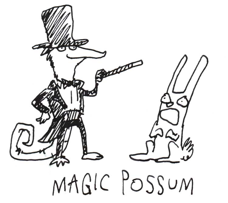 "Drawing of a possum in a tuxedo and top hat, holding a wand above a frightened-looking rabbit, with the caption ""magic possum"""