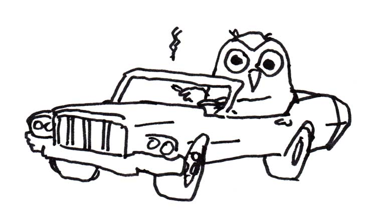 Drawing of an owl smoking a cigarette in a convertible