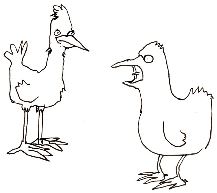 Drawing of two birds